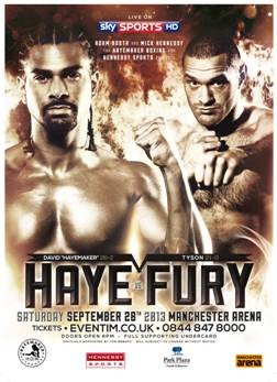 haye fury fight poster